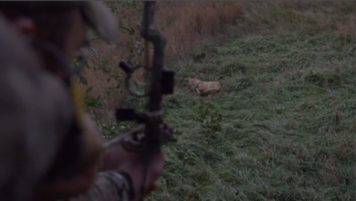 "Photo of Nolan from ""Comin' In Hot"" Makes a Slow Motion Shot on a Coyote with a Bow"