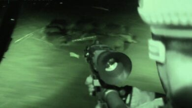 Photo of Video: Extreme Night Vision Hog Hunting From a UTV