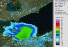 Photo of Radar Images Show Billions of Mayflies Hatching Over Lake Erie