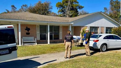 Photo of Feral hogs attack and kill caregiver outside of Texas home