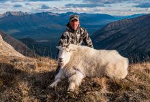 Photo of Greg McHale's Wild Yukon